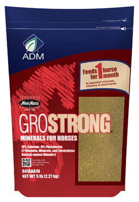 ADM Alliance Nutrition 641AAA1U 5 lbs. GroStrong Horse Minerals