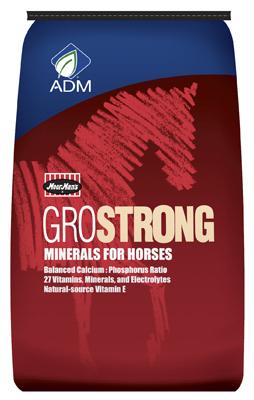 ADM Alliance Nutrition 641BT 25 lbs. Complete Horse Vitamin & Mineral
