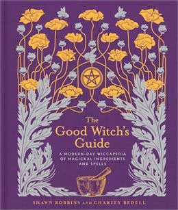 Azure Green BGOOWIT Good Witchs Guide by Robbins & Bedell