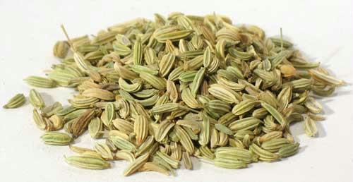 AzureGreen H16FENS 1oz Fennel Seed - Foeniculum Vulgare