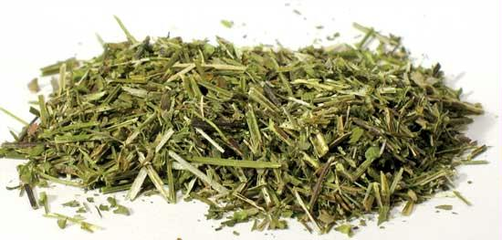 AzureGreen H16SCUC 1oz Scullcap Cut - Scutellaria laterifolia
