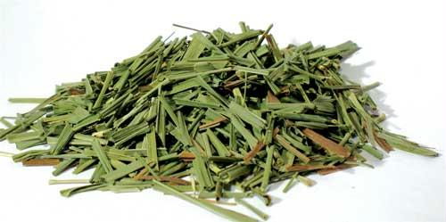 AzureGreen HLEMGC 2oz Lemongrass Cut - Cymbopogon Citratus