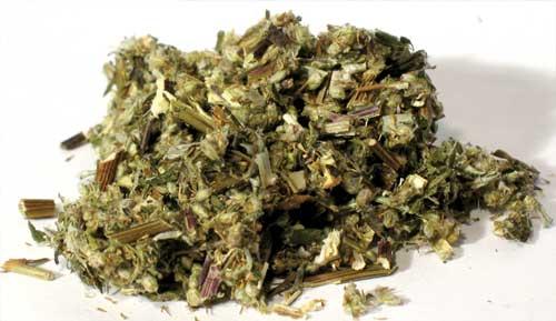 AzureGreen HMUGC 2 oz Mugwort Cut - Artemisia Vulgaris