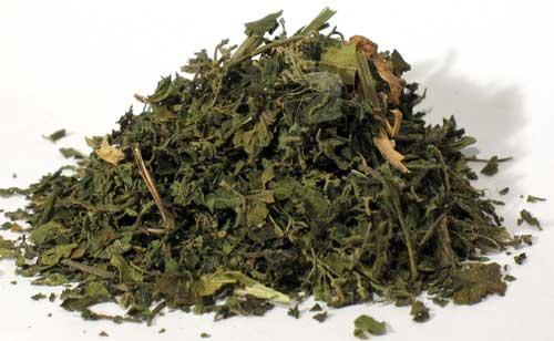 AzureGreen HNETCB 1 Lb Nettle Stinging Leaf Cut - Urtica Dioica