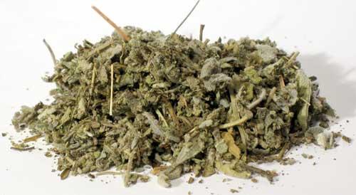AzureGreen HSAGW 2 oz Sage Leaf Cut - Salvia Officinalis
