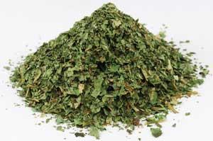 AzureGreen HWILLCB 1 Lb Wild Lettuce Leaf Cut Wild Crafted - Lactuca Canadensis