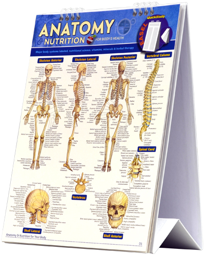 BarCharts 9781423222675 Anatomy & Nutrition Quickstudy Easel