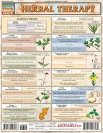 BarCharts- Inc. 9781572228986 Herbal Therapy