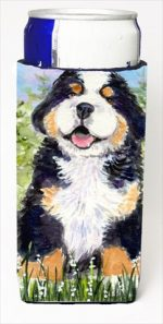 Carolines Treasures SS8750MUK Bernese Mountain Dog Michelob Ultra bottle sleeves For Slim Cans - 12 Oz.