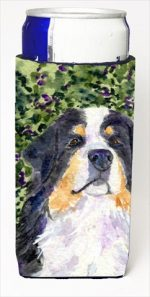 Carolines Treasures SS8830MUK Bernese Mountain Dog Michelob Ultra bottle sleeves For Slim Cans - 12 Oz.