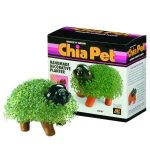 Chia Pet Decorative Planter Kit Puppy - 1 ea