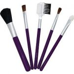 Exceptional Parfums 286821 Because You Are Travel Makeup Brush Set 5 Piece