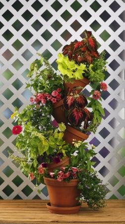 Flip Flop Flower Pot 301W Stackable Plant Stand