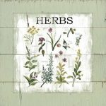 Galaxy of Graphics PDX17475SMALL Shiplap Herbs Poster Print by Carol Robinson 12 x 12 - Small