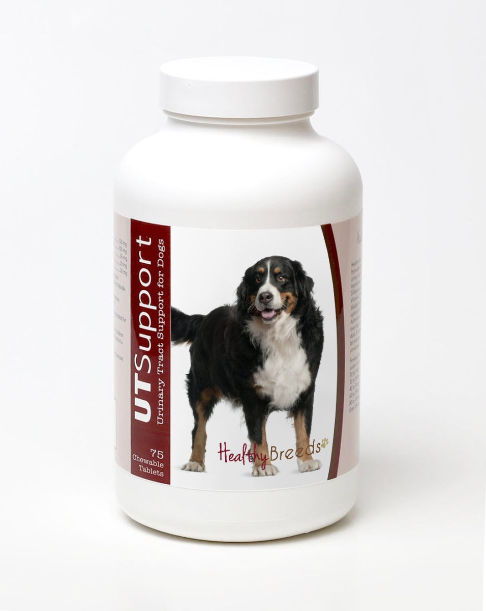 Healthy Breeds 840235143949 Bernese Mountain Dog Cranberry Chewables - 75 Count