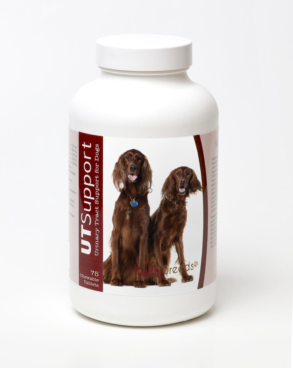 Healthy Breeds 840235144120 Irish Setter Cranberry Chewables - 75 Count