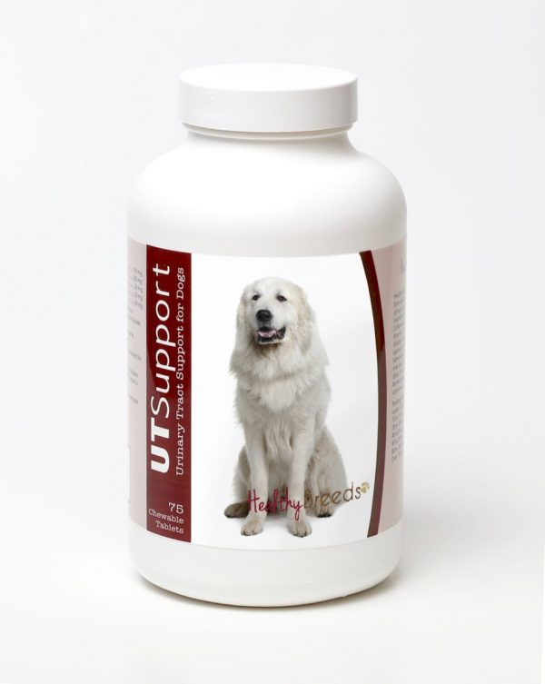 Healthy Breeds 840235144397 Great Pyrenees Cranberry Chewables - 75 Count