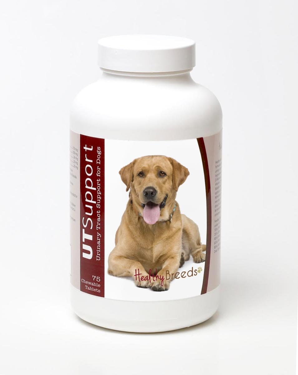 Healthy Breeds 840235144762 Labrador Retriever Cranberry Chewables -75 Count