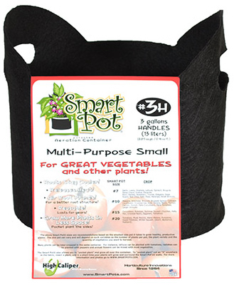 High Caliper Growing 21003RT 3 Gallon Black Patented Small Smart Pot With Handles