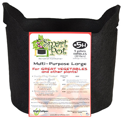 High Caliper Growing 21005RT 5 Gallon Black Patented Small Smart Pot With Handles