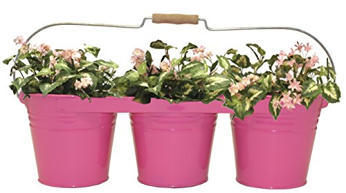Houston International Trading 8333E HPK Enameled Galvanized Triple Planter with Wood Handle for 6.5 in. Pots HotPink