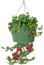 Houston International Trading 8399E SA Enameled Galvanized Hanging Strawberry Floral Planter - Sage