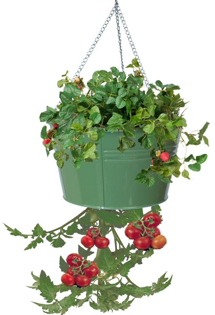 Houston International Trading 8399E SA Enameled Galvanized Hanging Strawberry Floral Planter - Sage