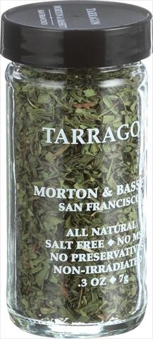 Morton And Bassett 0.25 Ounce Taragon Case Of 3