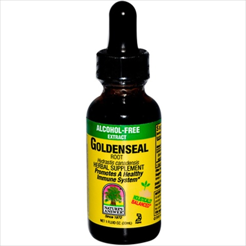 NatureS Answer Goldenseal Root Alcohol Free - 1 Fl Oz