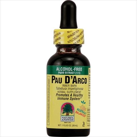 NatureS Answer Pau DArco Inner Bark Alcohol Free - 1 Fl Oz