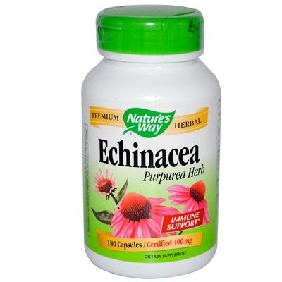 NatureS Way Echinacea Purpurea Herb - 180 Capsules