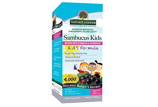 Natures Answer 1718758 8 oz Alcohol-Free Sambucus Kids Formula Original