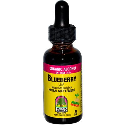 Natures Answer Blueberry Leaf - 1 fl oz