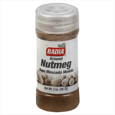 Nutmeg Ground -Pack of 12