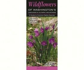 Quick Reference Publishing QRP218 Wildflowers of WAs Cascade Mtns