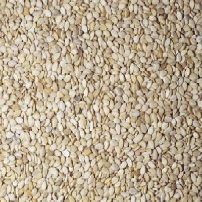 Seeds BG18007 Seeds Sesame Brn Unhulled - 1x5LB