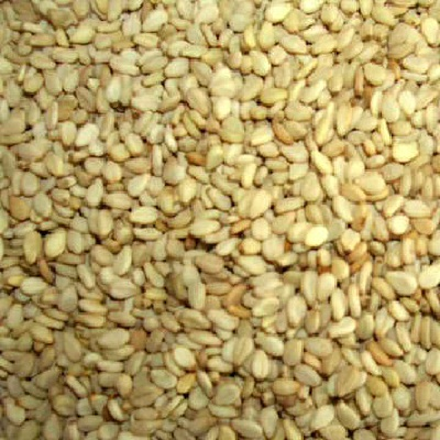 Seeds BG18009 Seeds Hulled Snflower Seed - 1x5LB