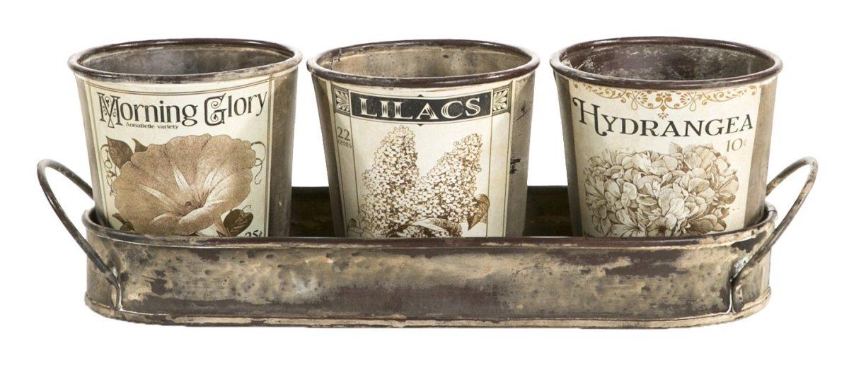 Vintage Garden Herb Pots