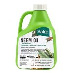 Woodstream 5182-6 16 oz Neem Oil Concentrate