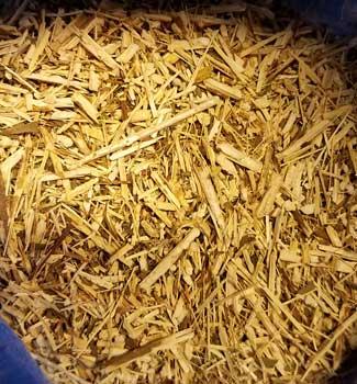 Azure Green HGOLCB 1 lbs Goldenrod Cut