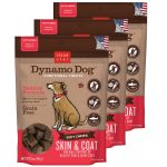 Cloud Star 192959800357 5 oz Dynamo Dog Skin & Coat - Salmon Functional Treats - Pack of 3