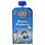 EARTHS BEST BABY PUREE BANANA BLUEBRR-4 OZ -Pack of 6