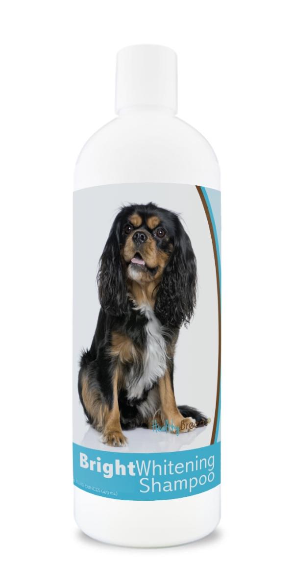 Healthy Breeds 840235169697 12 oz Cavalier King Charles Spaniel Bright Whitening Shampoo