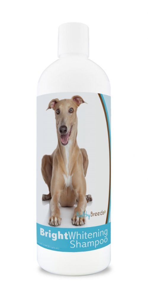 Healthy Breeds 840235169741 12 oz Italian Greyhound Bright Whitening Shampoo