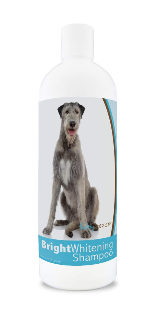 Healthy Breeds 840235169826 12 oz Irish Wolfhound Bright Whitening Shampoo
