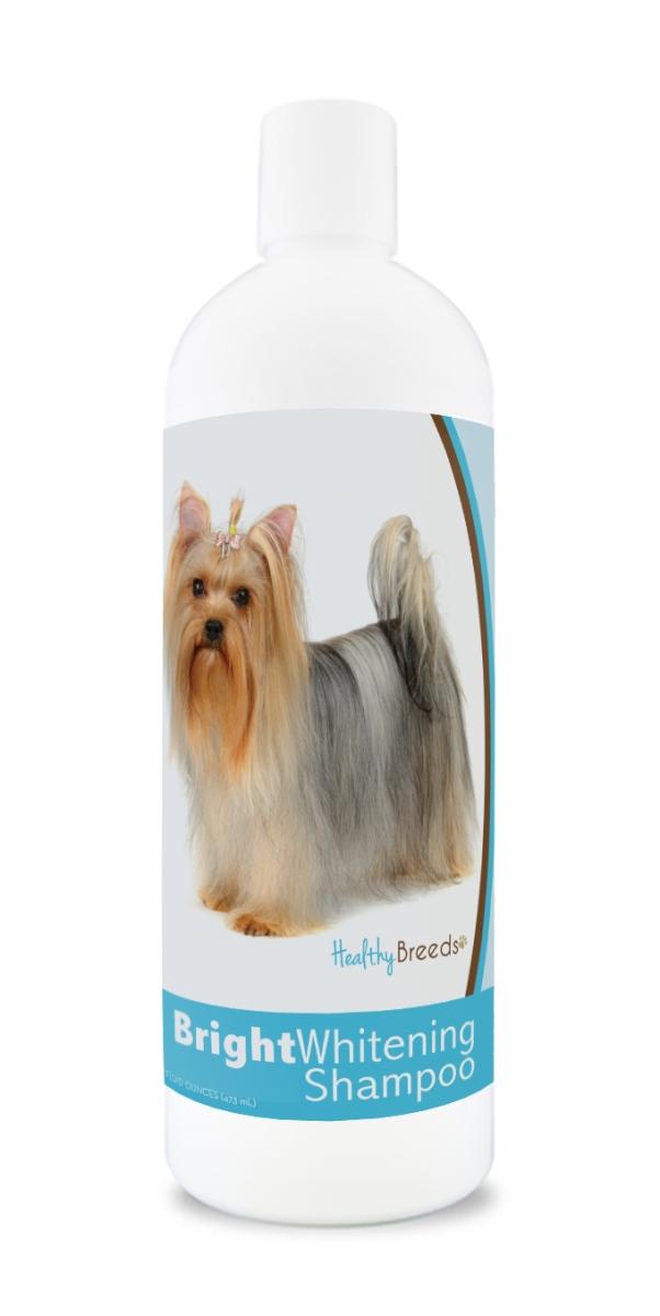 Healthy Breeds 840235169833 12 oz Yorkshire Terrier Bright Whitening Shampoo