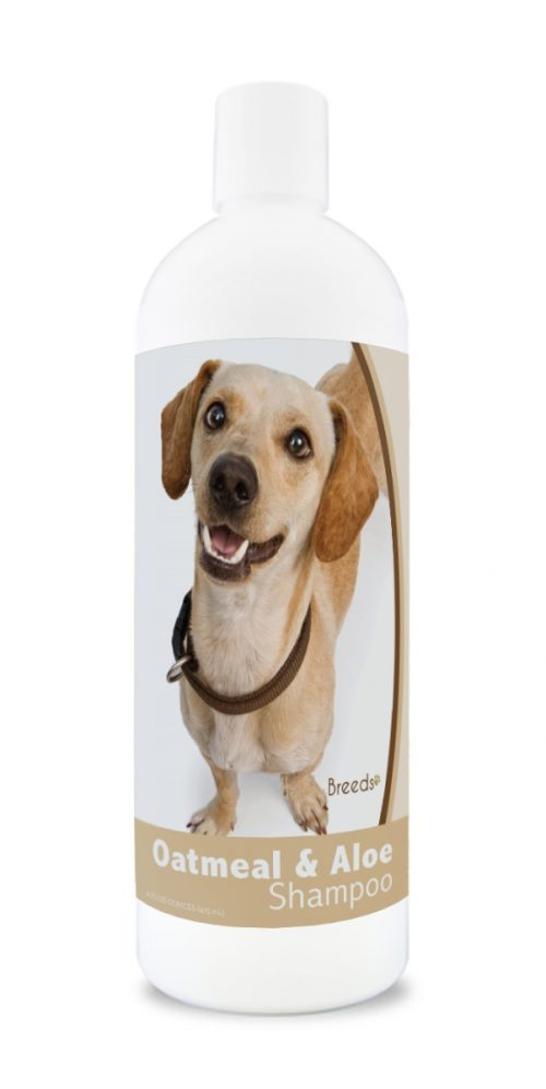 Healthy Breeds 840235171775 16 oz Chiweenie Oatmeal Shampoo with Aloe