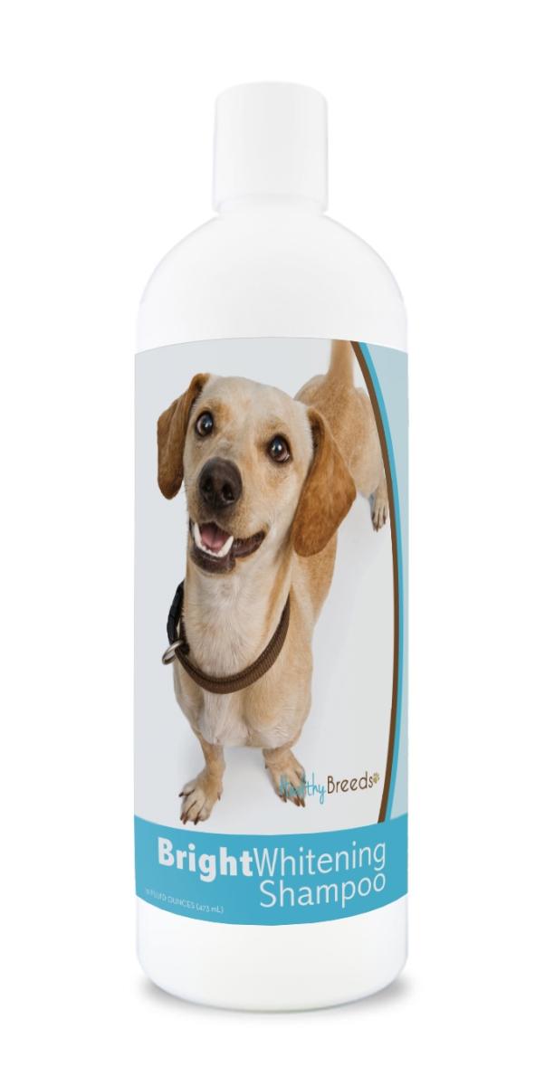 Healthy Breeds 840235171829 12 oz Chiweenie Bright Whitening Shampoo