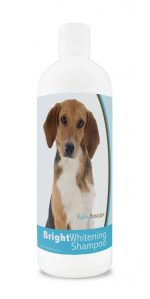 Healthy Breeds 840235174707 12 oz Harrier Bright Whitening Shampoo