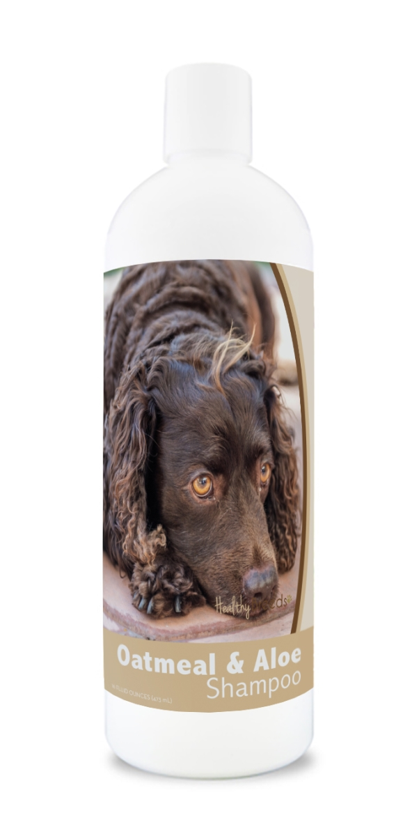 Healthy Breeds 840235176190 16 oz American Water Spaniel Oatmeal Shampoo with Aloe